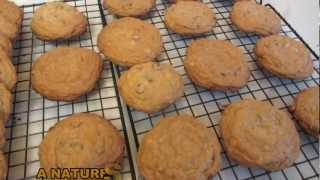 Gluten Free Toll House Cookies ~ Chocolate Chip Cookies