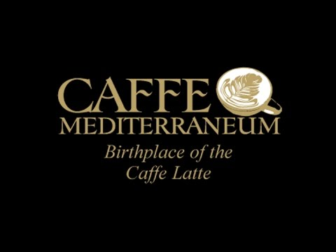 The Closing Party of the Mediterraneum . .