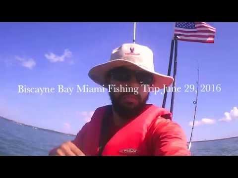Inshore Kayak Fishing : Miami Biscayne Bay -Slaying Fish