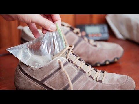 LACOSTE SPORT Высокие кеды и кроссовки