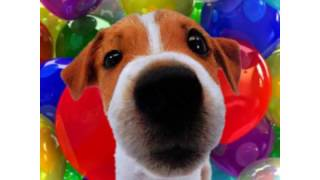 Happy Birthday Becky! - Your Personal Birthday Video