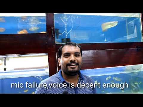 Exotica The Aquarium Store