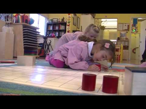 Montessori in Action: Third Year Montessori and Normalization