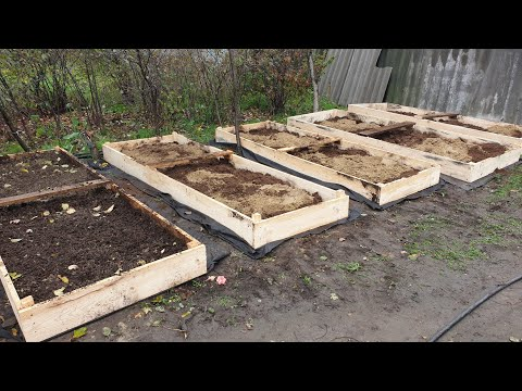 Вопрос: Как лучше избавиться от сорняков на грядке с клубникой?