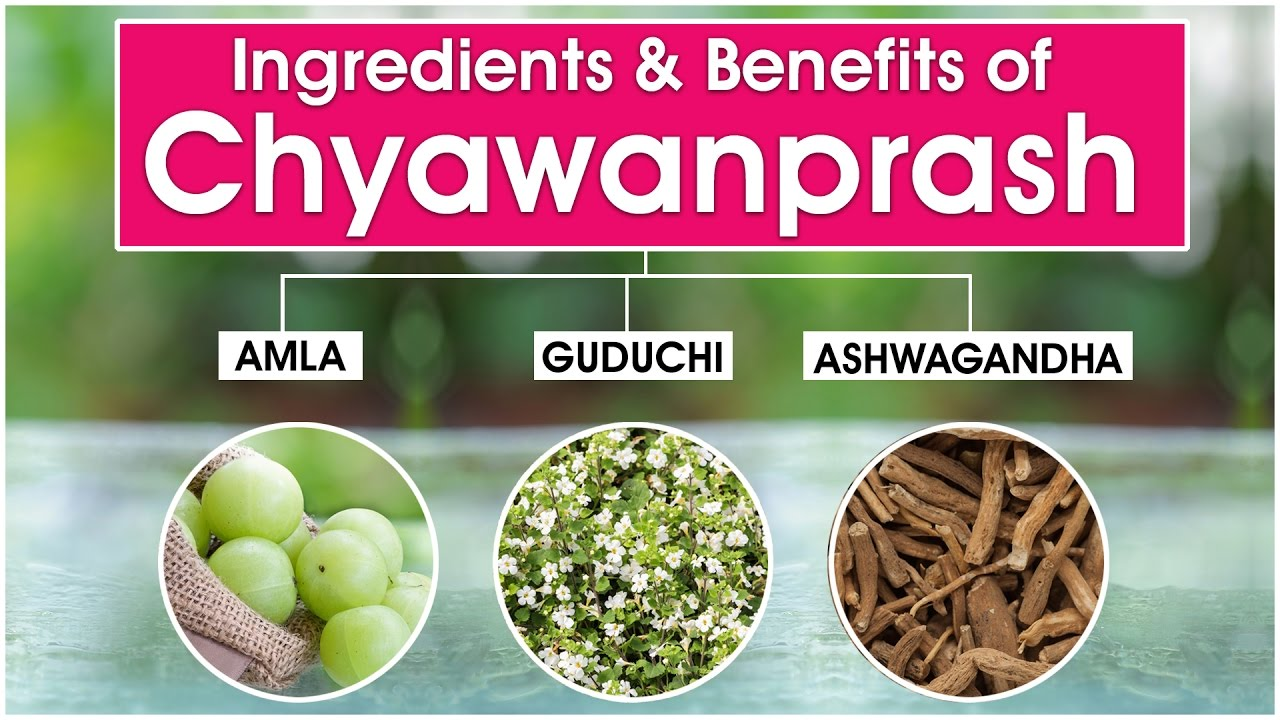 Benefits Of Chyawanprash How To Improve Your Immunity