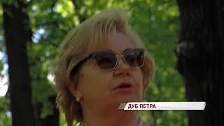 Семью губернаторских деревьев пополнил Петровский дуб