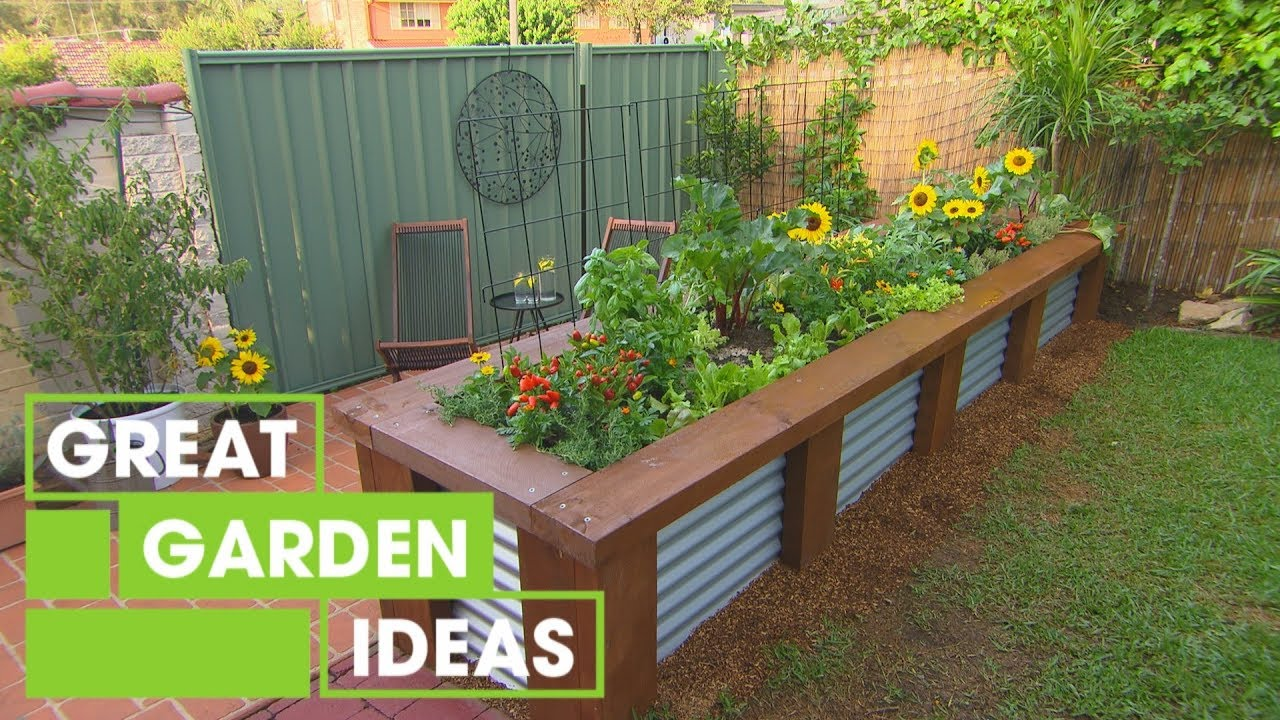 Getting Started with a Veggie Patch  Gardening  Great Home Ideas