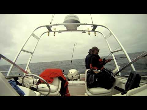 Epic Half Moon Bay Albacore Tuna Fishing
