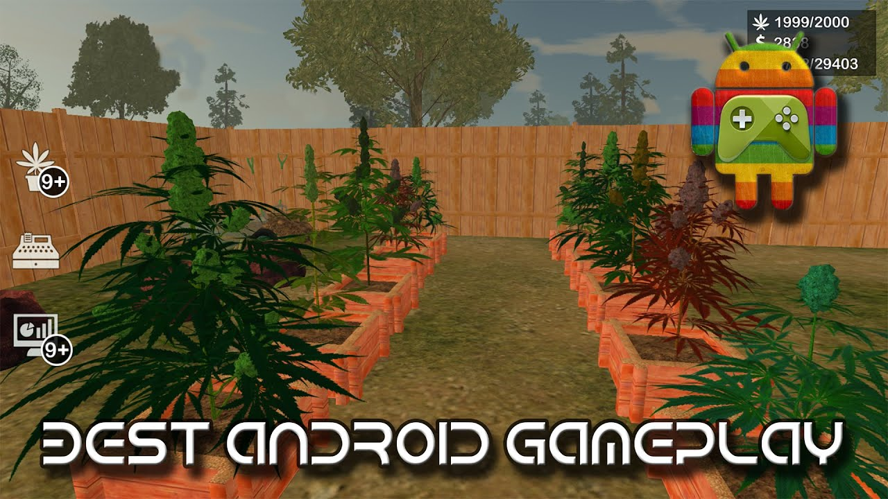 Weed Garden The Game - Open Beta - Android 2015 - YouTube
