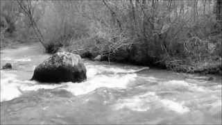 Dimitris Kalantzis Quintet & Athens Camerata _ Away On The Misty River