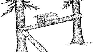 Силок, ловушка на пушнину ( Кто знает как называется?)Snare, trap for furs