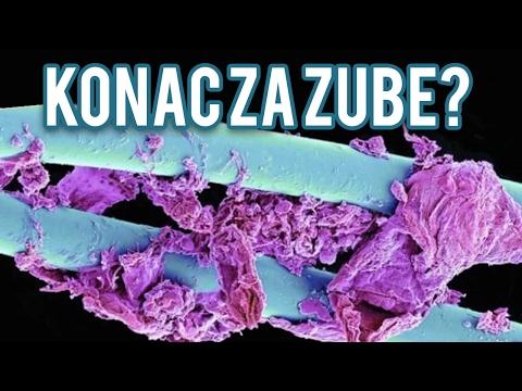 Pogodi Mikroskopsku Sliku! ( IZAZOV )