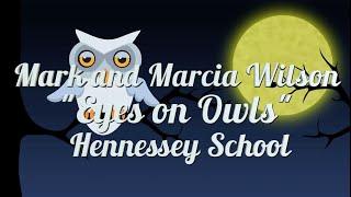 Eyes on Owls 2020