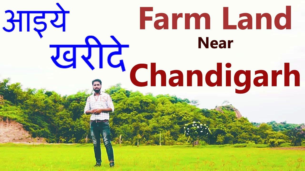 #Farm #Land Near #Chandigarh पूरा करे सपना फार्म हाउस हो अपना Feel The Nature #shivalik #mountains