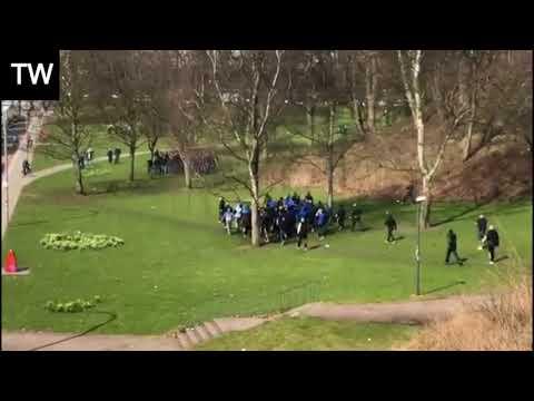 Schalke vs HSV fans - Massive fight