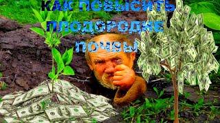 Смотреть видео Плодородие почвы