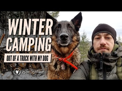 Winter Camping With my Dog out of a TRUCK!