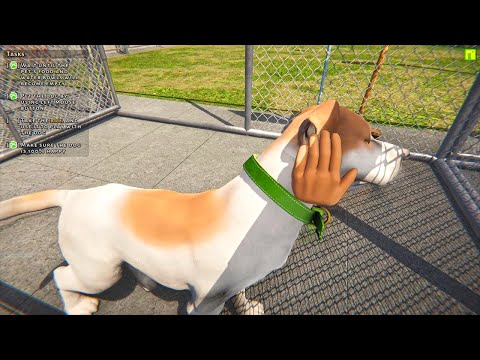 Animal Shelter Simulator Gameplay Dog Rescue & Adoption |