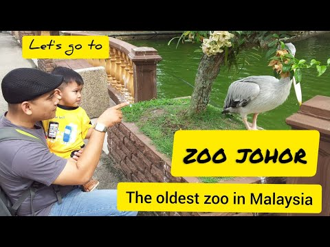 Visit Zoo Johor, the Oldest Zoo in Malaysia