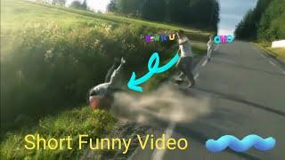 Download Short funny videos