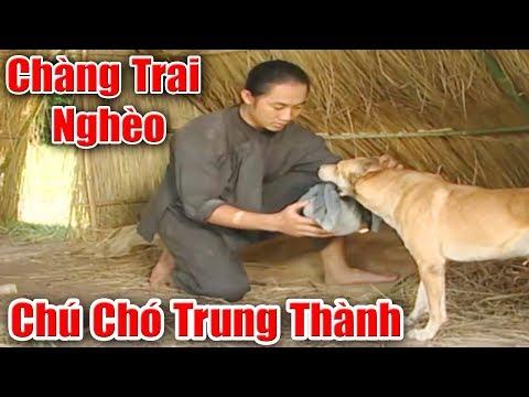 Chàng Trai Nghèo Khổ Và Chú Chó Trung Thành