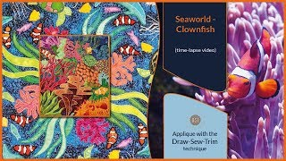 How it was made - Seaworld / Clownfish (DST / Time-lapse)