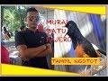 Murai Batu Pajero Dan Kacer Ladrang Tampil Ngotot  Mp3 - Mp4 Download