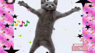 Seelikukütid-Veronika Dj Patu remix