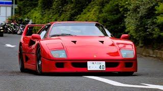 【反則級のカッコよさ!!】時価2億円のフェラーリF40など30台が首都高に向け快音加速!!【1080p/60fps】Ferrari F40 accelerating sound!!