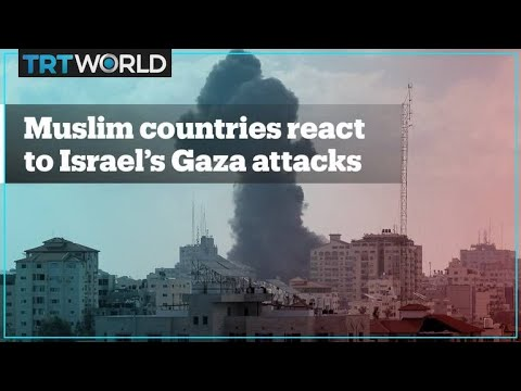 How are Muslim countries reacting to Israeli attacks on Gaza?