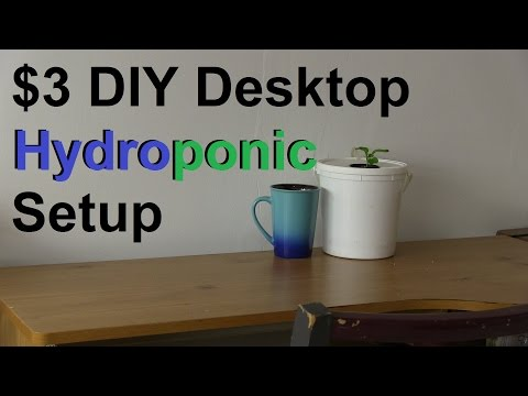 How to Make a Simple $3 DIY Desktop Hydroponic System