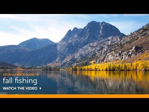 Fall Fishing Tips by Professional Guide Doug Rodricks