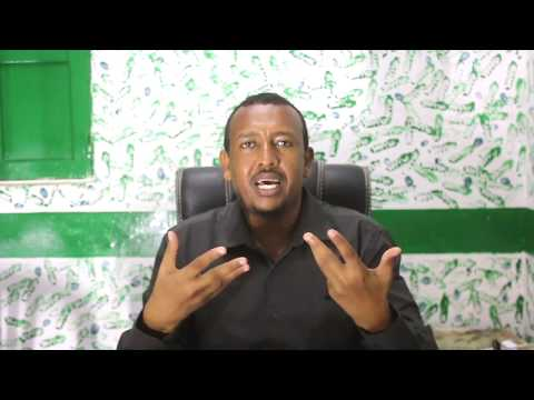 Lesson 08:  How to Use Signals IML and FOREX - Somali