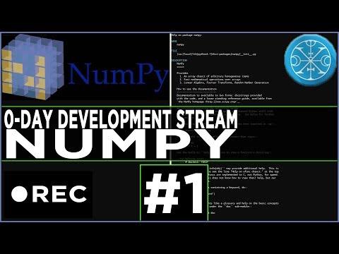 Stream Recording: numpy 0-day hunting with custom fuzzer #1