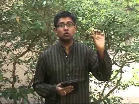 RAS Ramayana For Us Episode 02 of 43 Dushyanth Sridhar