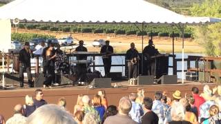 Nathan Owens Motown Legends performing at Naggiar Vineyards Winefest 2014.