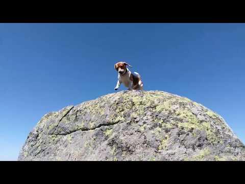 Fun trip to Vitosha Mountain