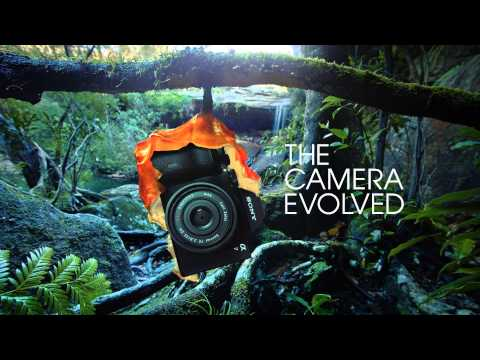 see-the-camera-evolved.-introducing-the-sony-alpha