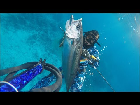 Action Spearfishing Ep.1 - Indian Ocean Tuna 2017