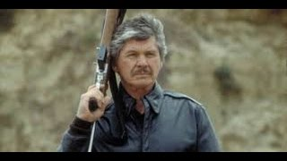 Death Wish 4  The Crackdown Full Movie
