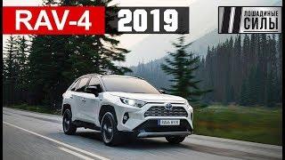 Тест-драйв Toyota RAV-4 2019
