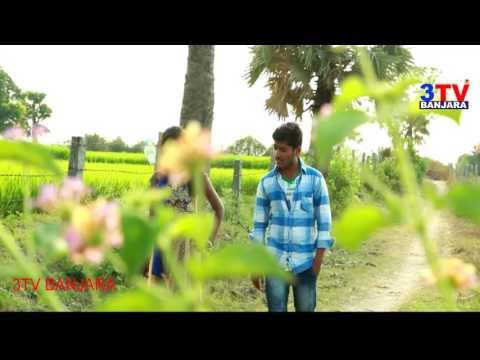 Chinuku Chinuku Pani !! LambadiAudio Song | 3TV BANJARA