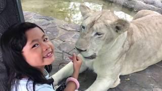 Faiha Penyanyi Enak Susunya di Cakar Macan Putih di Eco Park Ancol