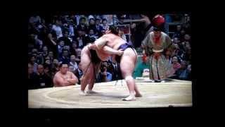 逸ノ城vs魁聖 平成27年大相撲春場所 Ichinojo vs Kaisei SUMO.
