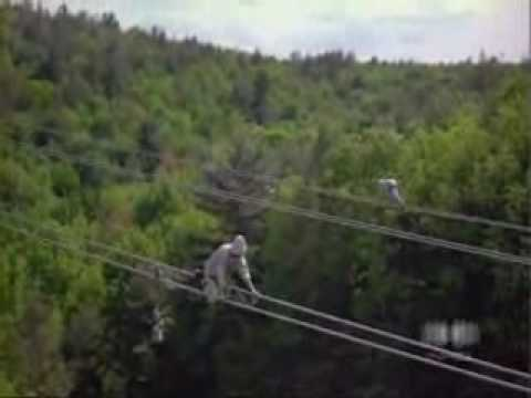 Electric power lineman