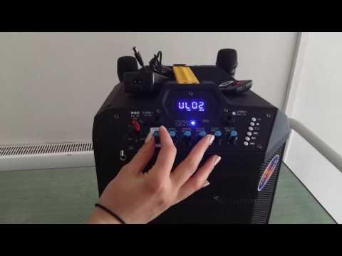 Feyyang Temeisheng 10-инчов 3800 ватов високоговорител QX-1014 9
