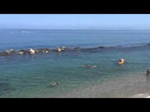 ¡Así luce el primer lunes de verano en Costa Sur Puerto Vallarta!