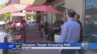 Rash Of Burglaries At Vietnamese Mall In San Jose Has Merchants On Edge