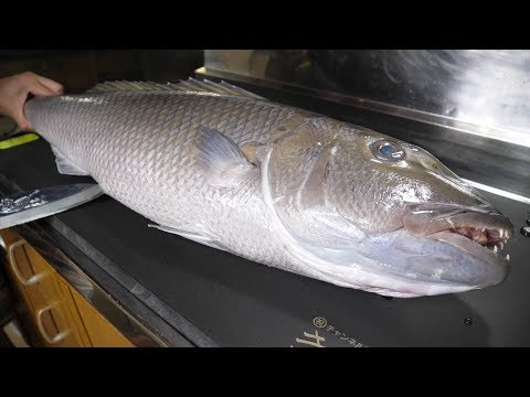 [Uncut Video] Ancient Fish-like Blue Fish? I made Sashimi and ate it! How did it taste like?