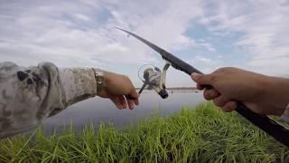 Ловля карася на Торфяниках на поплавочную удочку. Рыбалка в Калининградской области.